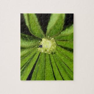 Baby Palm Plant Puzzle