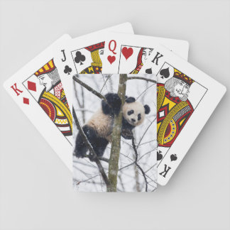 Baby Panda in Tree Playing Cards