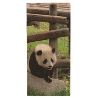 Baby Panda - Personalizable Text Wood USB Flash Drive