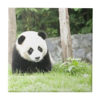 Baby Panda Tile