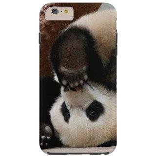 Baby pandas playing - baby panda  cute panda tough iPhone 6 plus case