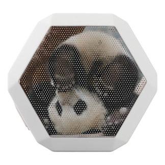 Baby pandas playing - baby panda  cute panda white bluetooth speaker