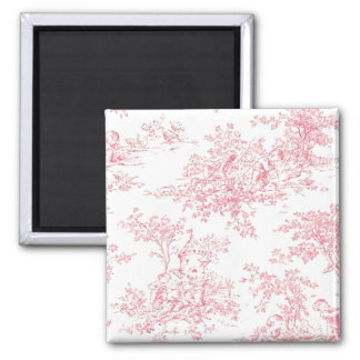 Baby Pink Toille magnet