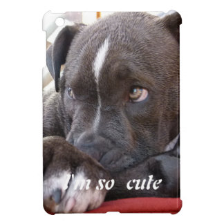 Baby Pitbull Puppies Cover For The iPad Mini