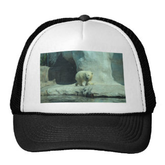 Baby Polar Bear Cap