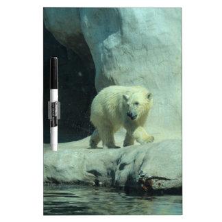 Baby Polar Bear Dry-Erase Boards
