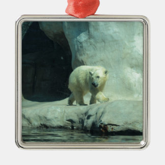 Baby Polar Bear Silver-Colored Square Decoration