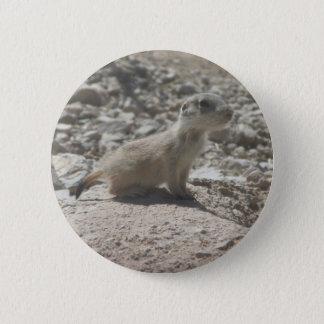 Baby Prairie Dog 6 Cm Round Badge