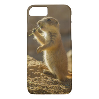 Baby prairie dog eating, Arizona iPhone 8/7 Case