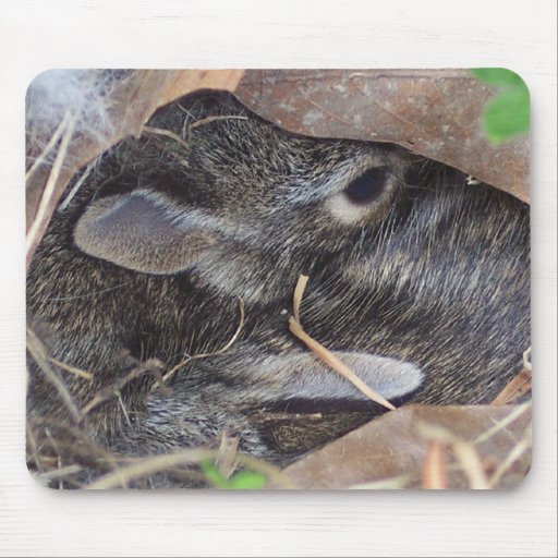 Baby rabbits hiding in leaves mouse mat