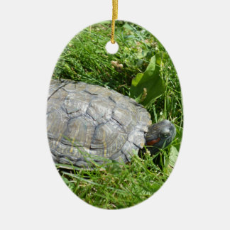 Baby Red Eared Slider Turtle Ceramic Oval Decoration