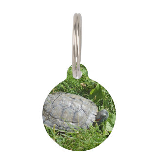 Baby Red Eared Slider Turtle Pet Name Tags