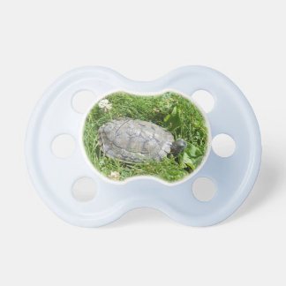 Baby Red Eared Slider Turtle BooginHead Pacifier