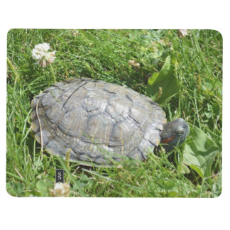 Baby Red Eared Slider Turtle Journals