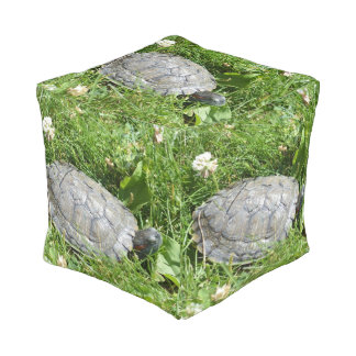 Baby Red Eared Slider Turtle Cube Pouf