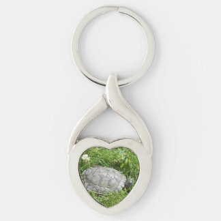 Baby Red Eared Slider Turtle Silver-Colored Twisted Heart Key Ring