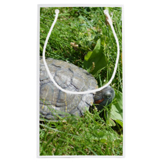 Baby Red Eared Slider Turtle Small Gift Bag