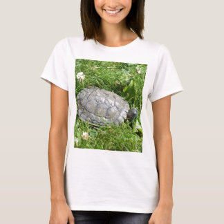 Baby Red Eared Slider Turtle T-Shirt