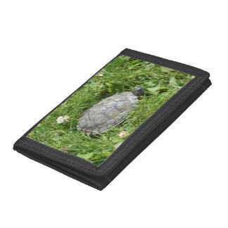 Baby Red Eared Slider Turtle Tri-fold Wallets