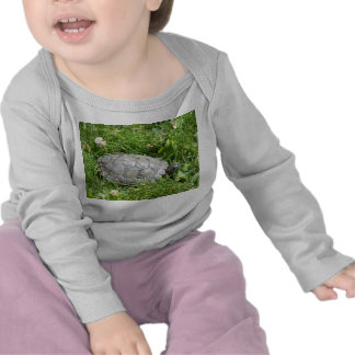 Baby Red Eared Slider Turtle Shirts