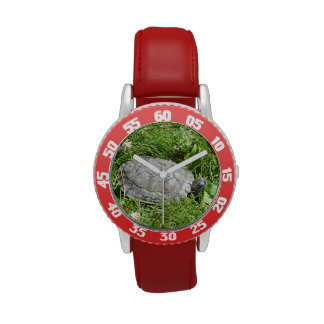 Baby Red Eared Slider Turtle Wrist Watches