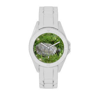 Baby Red Eared Slider Turtle Wristwatches