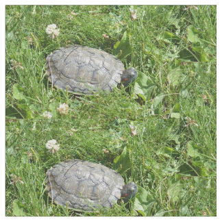 Baby Red Eared Slider Turtle Fabric