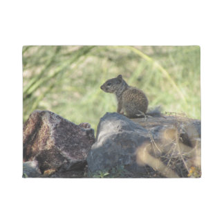 Baby Rock Squirrel Doormat