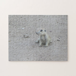 Baby Round-tail Ground Squirrel Jigsaw Puzzle