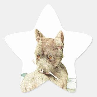 Baby Scotch Terrier - SUPER CUTE ! Star Stickers