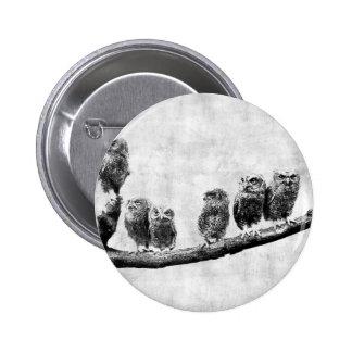 Baby Screech Owls Button