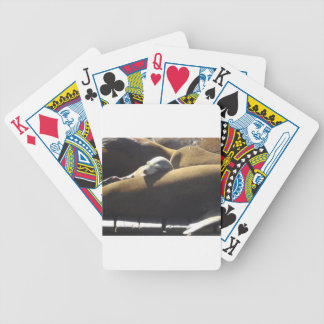 Baby Sea Lion Sleeping Bicycle Playing Cards