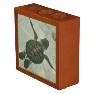 Baby Sea Turtle Swimming Out To Sea Desk Organiser