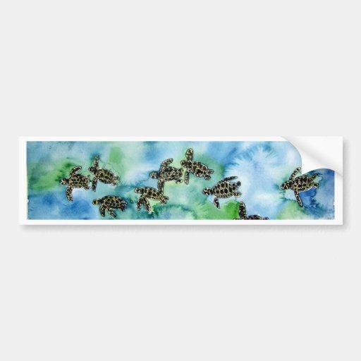 baby sea turtles reptile animal wildlife painting bumper sticker