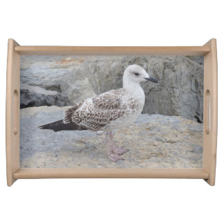 Baby Seagull Serving Tray