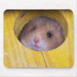 Baby Sierra Mouse Mat