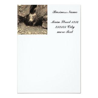 baby skunk, sepia 13 cm x 18 cm invitation card