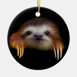 Baby Sloth Ceramic Ornament