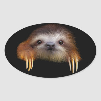 Baby Sloth Oval Sticker