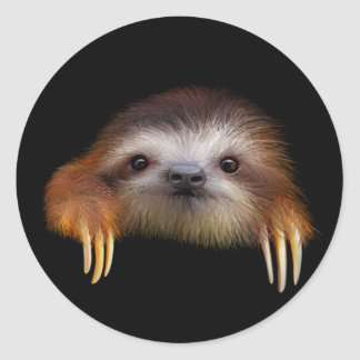 Baby Sloth Round Sticker