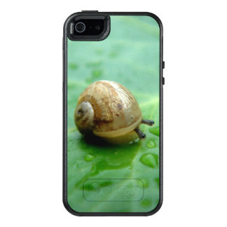 Baby Snail On Leaf With Waterdrops OtterBox iPhone 5/5s/SE Case