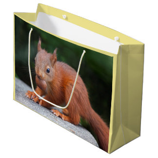 Baby Squirrel with Nut Gift Bag