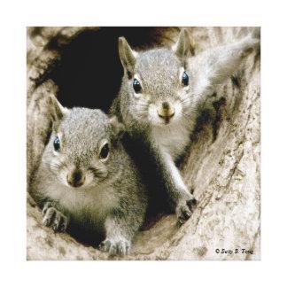 Baby Squirrels Canvas Print