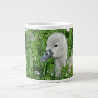Baby Swan in the Grass Mug Gray Swan