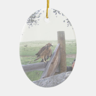 Baby Swensain Hawk ceramic oval ornament