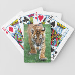 Baby tiger looking at you deck of cards