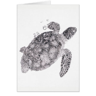 Baby Turtle by Vicci Lee Card