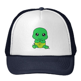 Baby turtle cap