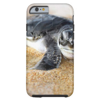 baby-turtle. iPhone 6 case Tough iPhone 6 Case