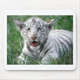 Baby White Tiger Mouse Pad